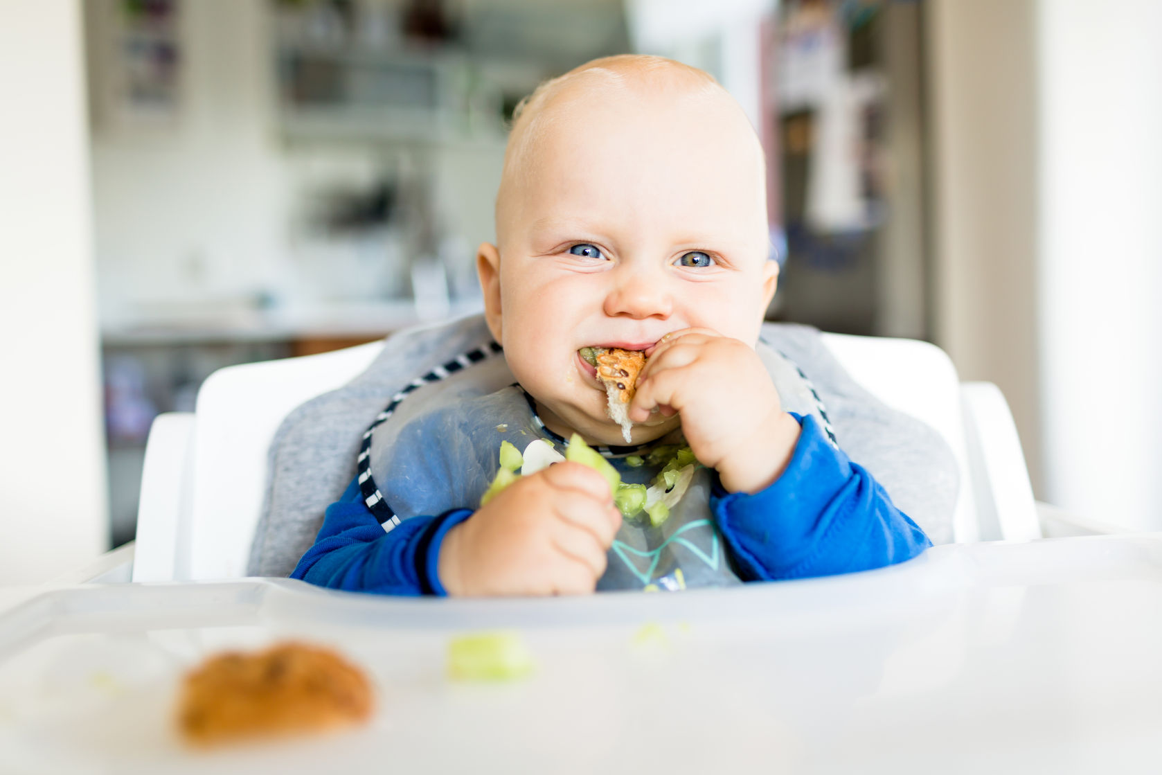 88394429 - baby eating bread and cucumber with blw method, baby led weaning. happy vegetarian kid eating lunch. toddler eat himself, self-feeding.